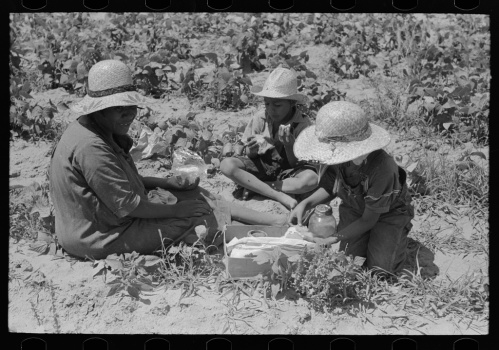 Russell Lee, photographer. Family of Negro agricultural day laborers eating lunch in string bean field near Muskogee, Oklahoma. Muskogee Oklahoma, 1939. June. Photograph. Retrieved from the Library of Congress, https://www.loc.gov/item/fsa1997026436/PP/. (Accessed October 29, 2017.)