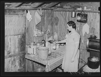 Russell Lee, photographer. Southeast Missouri Farms. Corner of kitchen, sharecropper's shack. La Forge project, Missouri. La Forge Missouri New Madrid County, 1938. May. Photograph. Retrieved from the Library of Congress, https://www.loc.gov/item/fsa2000012301/PP/. (Accessed October 29, 2017.)